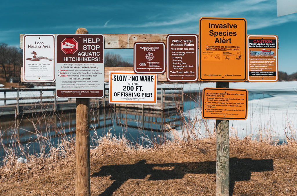 Stop Invasive Species: 10 Things You Can Do