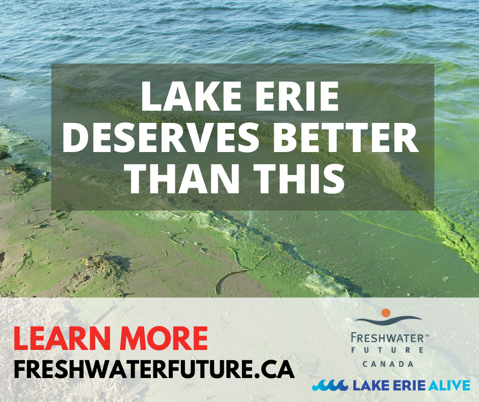 #lakeeriealive-canada-clean-water