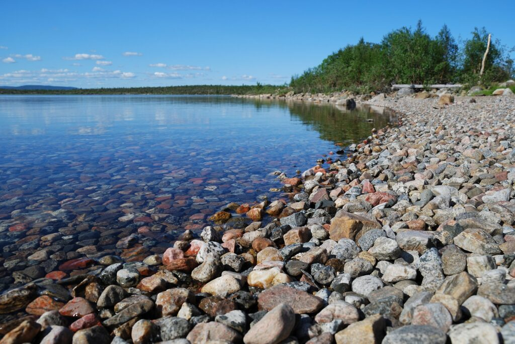 Freshwater Future Weekly: August 20, 2021