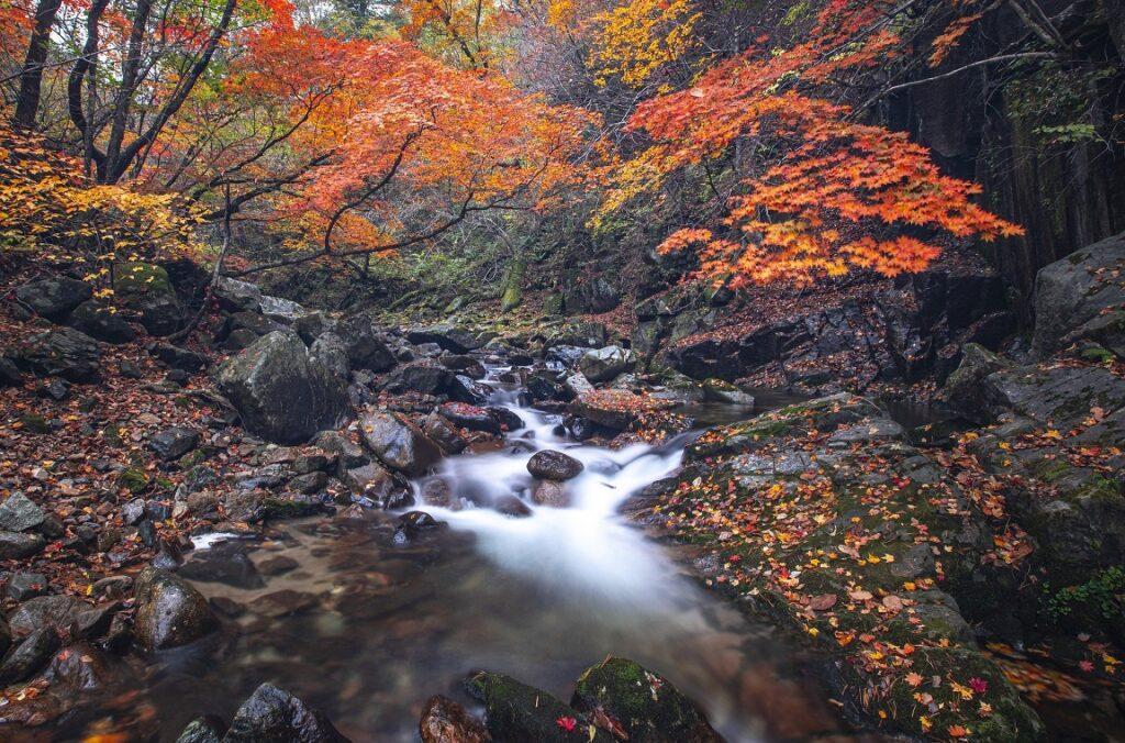 Freshwater Future Weekly: September 24, 2021